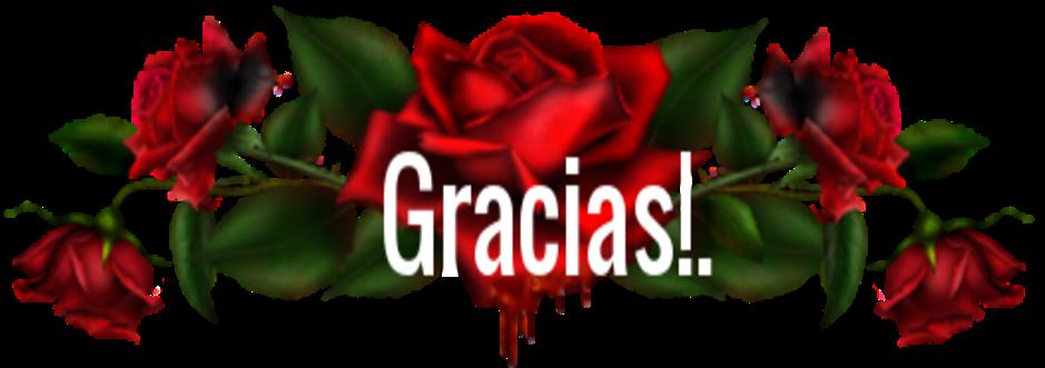 Gracias queridos amigos!!...