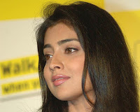 Southern Actress Shriya Saran