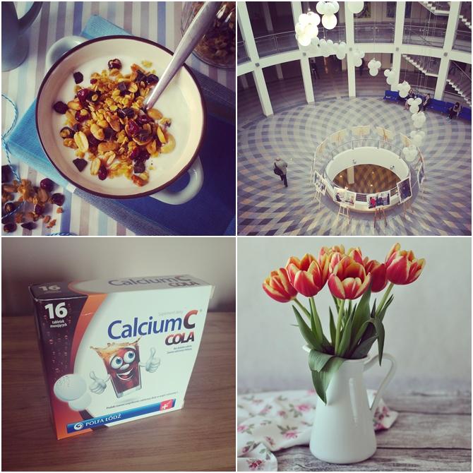tulipany, calcium, cola, ug, wns