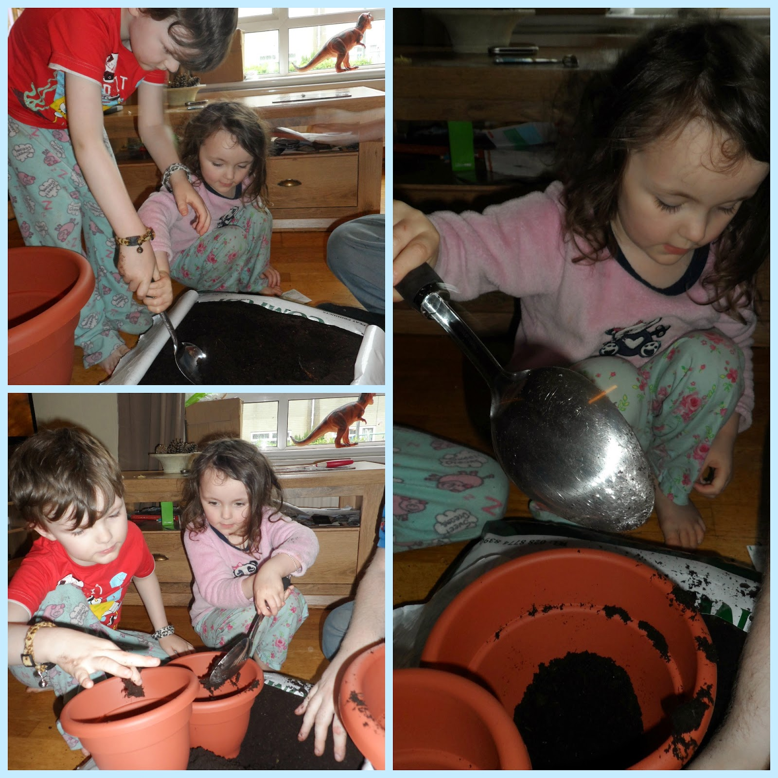 Planting seeds - The beginning of our 'grow your own' adventure