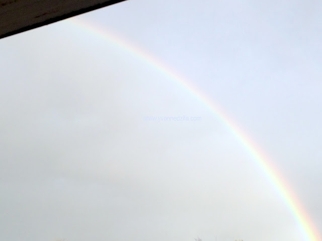 Rainbows This Week semicircle