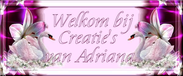 Creatie's van Adriana