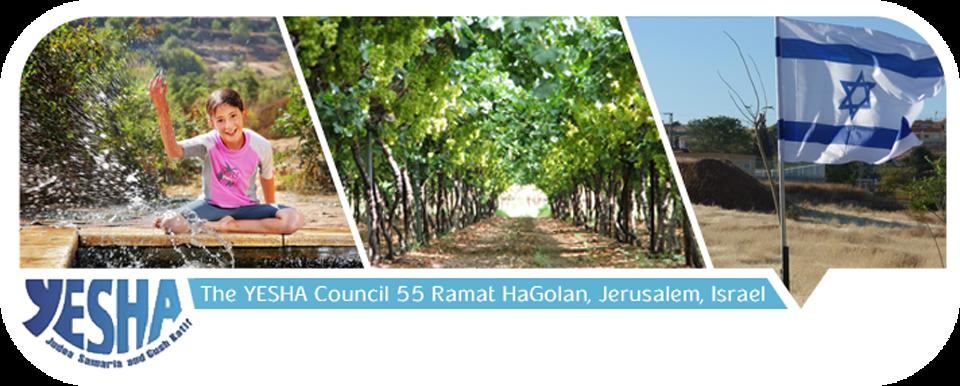 Yesha Council