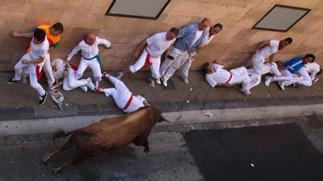 The cruel Bull of Pamplona
