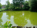 Cover foto Waterkwaliteit bebouwd gebied - signaleringsmonitoring: rapportage resultaten 2010-2012