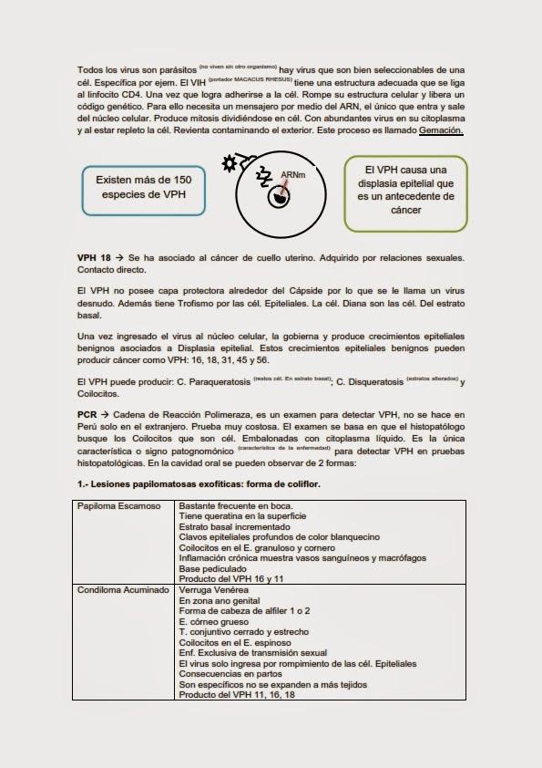 Apuntes de Odontología: conocimientos básicos para nuestra formación ...