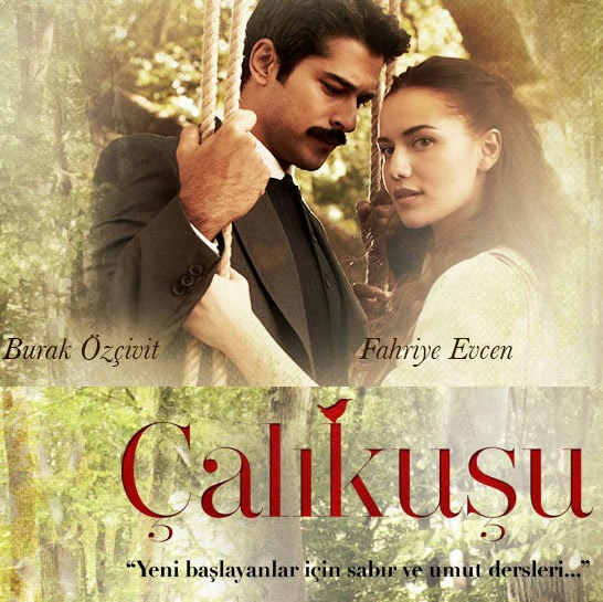 Series o Películas turcas de la A a la Z Calikusu