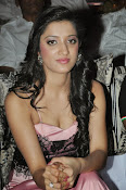 Richa panai latest glam pics-thumbnail-12