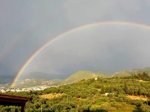 omblos rainbow