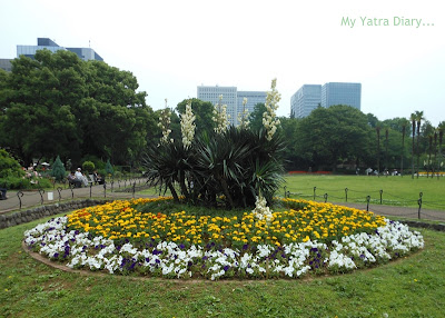 Beautiful Flower arrangement at the Hibiya Garden - Tokyo, Japan