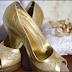 7 Tips Memulai Usaha Desainer Sepatu