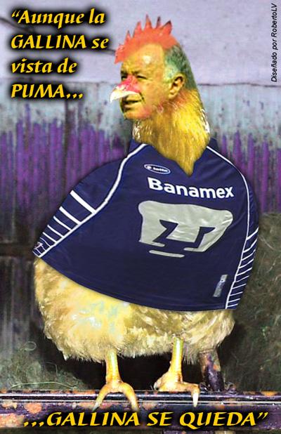 imagenes chistosas del pumas - Fotos anti pumas El mundo del Club America