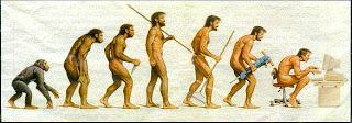 evolusi manusia