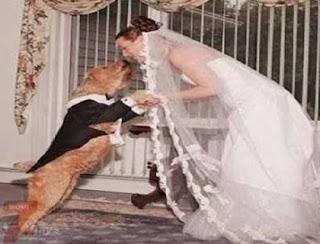Emily, la donna che ha sposato il suo cane
