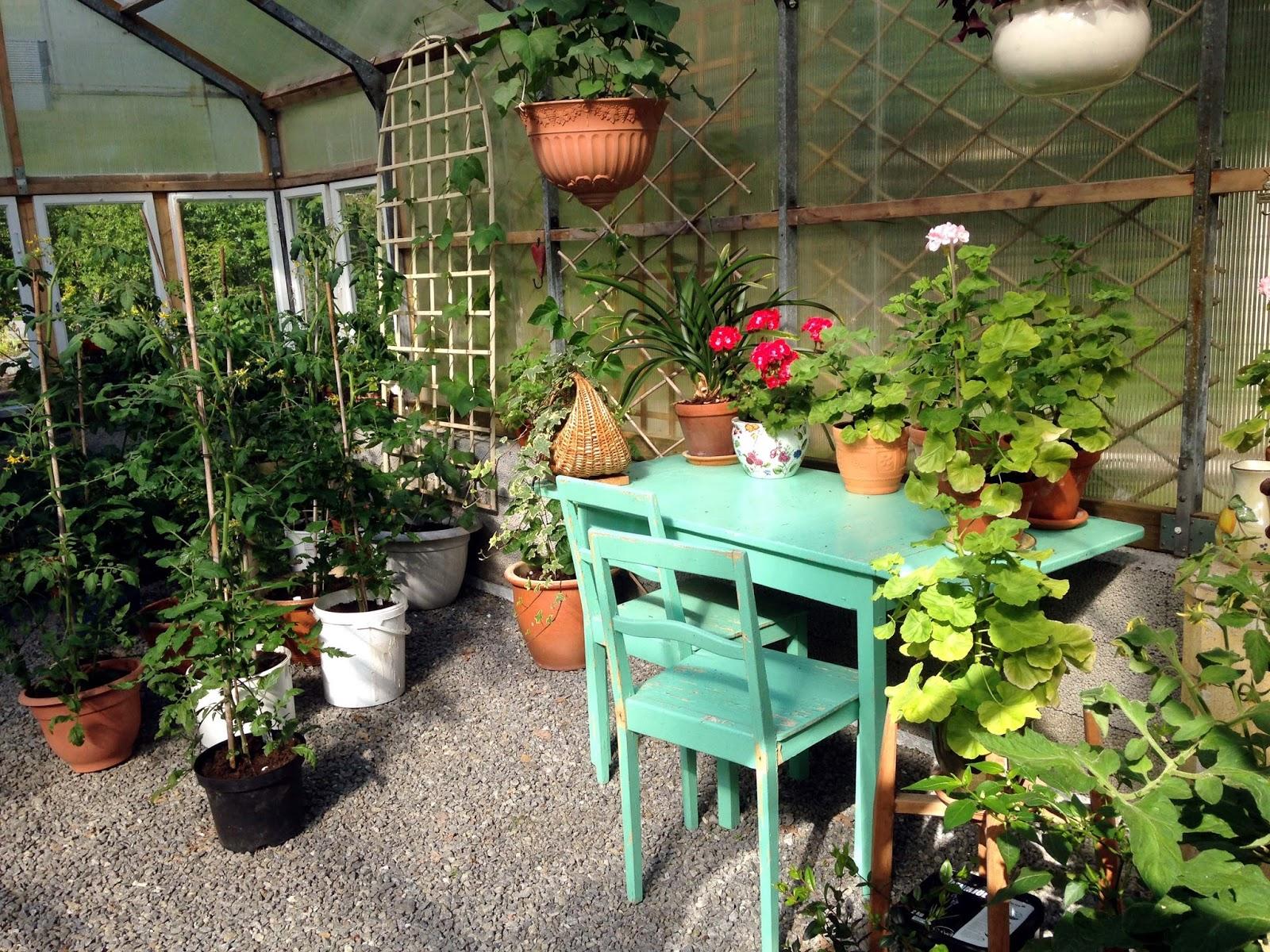 Tankar om och från min trädgård.: sta:s sommarmöte i umeå år 2015