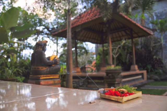 garden And offerings of Bali