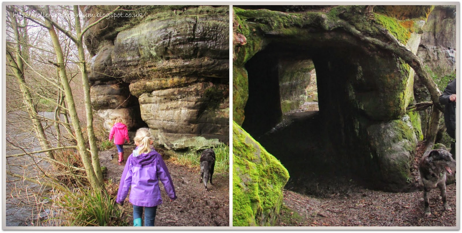 exploring tunnels, Woodland Trust