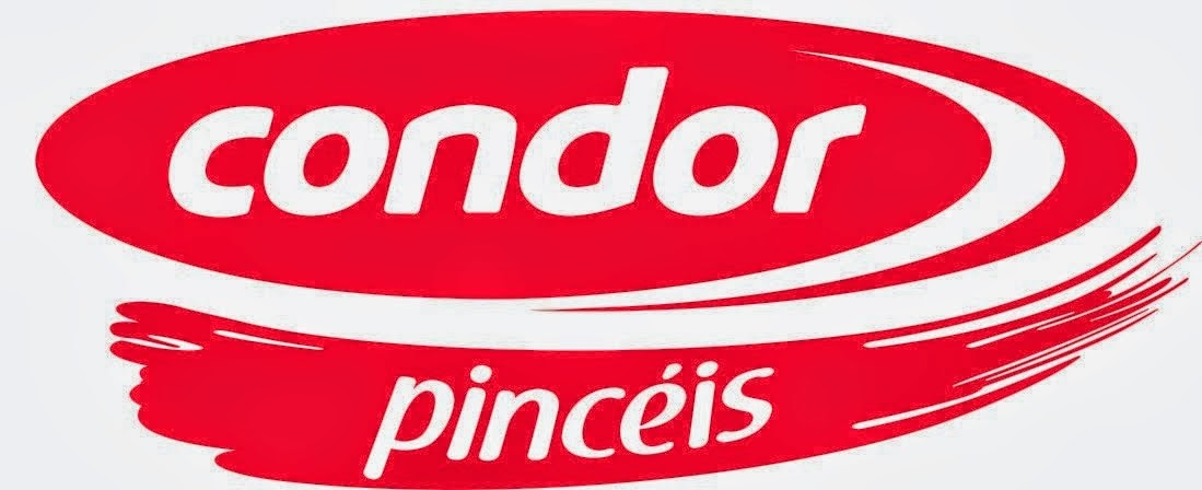 Condor Pinceis
