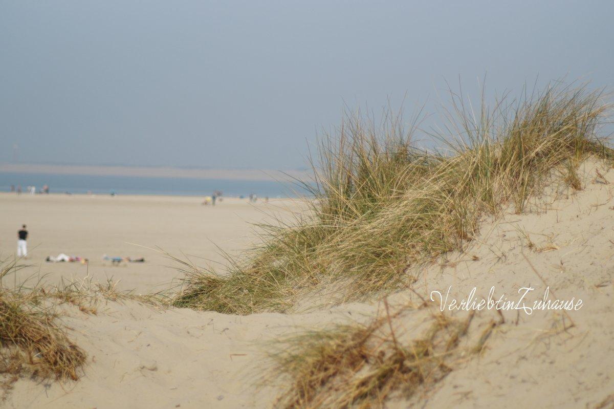 Foto mit Strandlandschaft und Dünen an der Nordsee, unbearbeitetes Bild vorher, #nofilter (Port Zelande, Ouddorp, Niederlande)