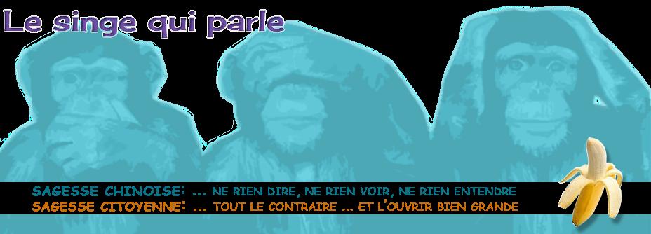 Le singe qui parle