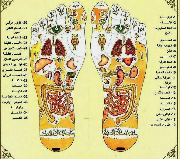 خريطة الجسد والعلاج بالتدليك المنعكس