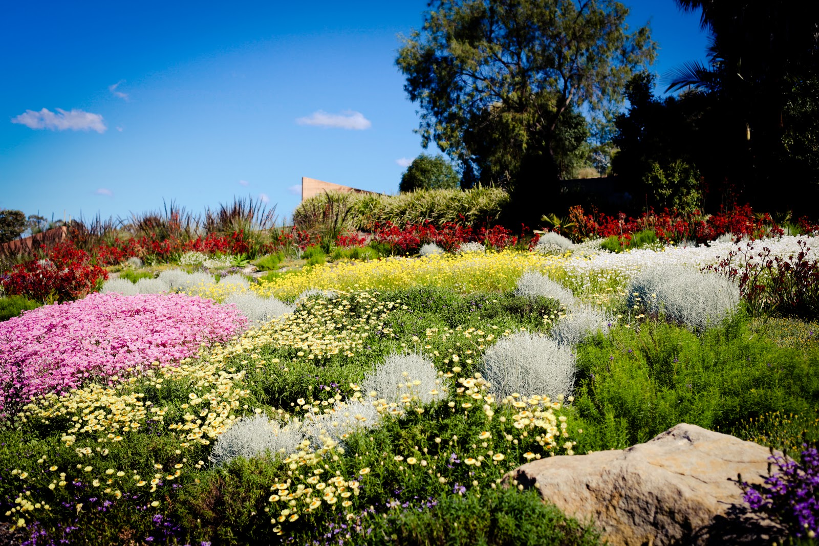 Superior Mount Botanical Gardens #1: IMG_1881.jpg
