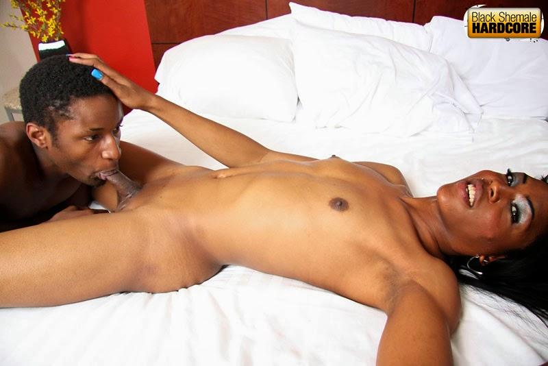 All Black Shemale Ebony shemales xxx tranny porn