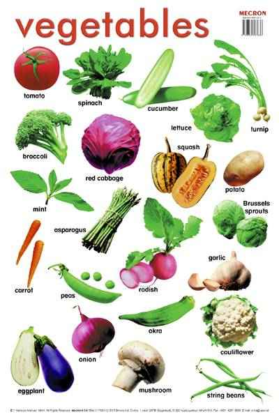 Learning english is great vegetables and fruits for Vegetal en anglais