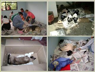 Tzite Sterilization Clinic Chiapas Mexico