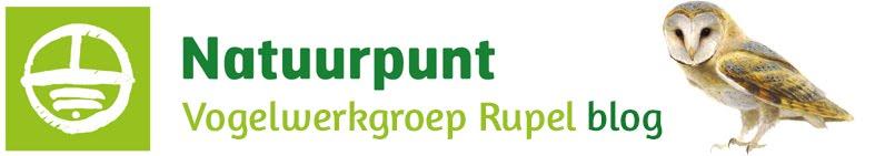 Vogelwerkgroep Natuurpunt Rupel