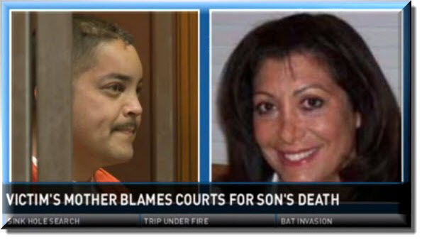 Judge Sharon Lueras, Phillip Hernandez, Family Court Sacramento, Jessica Hernandez, Matthew Hernandez, Superior Court of California County of Sacramento, Sacramento Family Court, Hatchet Death,
