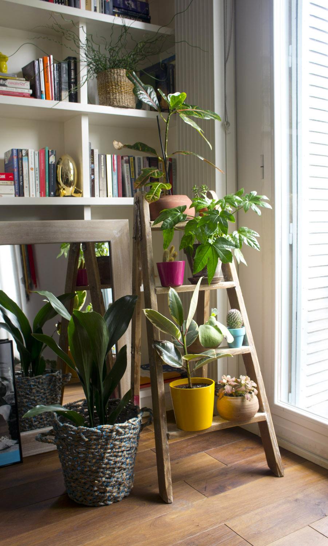 Escalera para plantas antes y despu s blog decoraci n for Decoracion debajo de escaleras con plantas