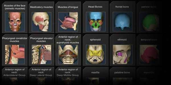 El contador de historias: Otra aplicación más sobre anatomia ...