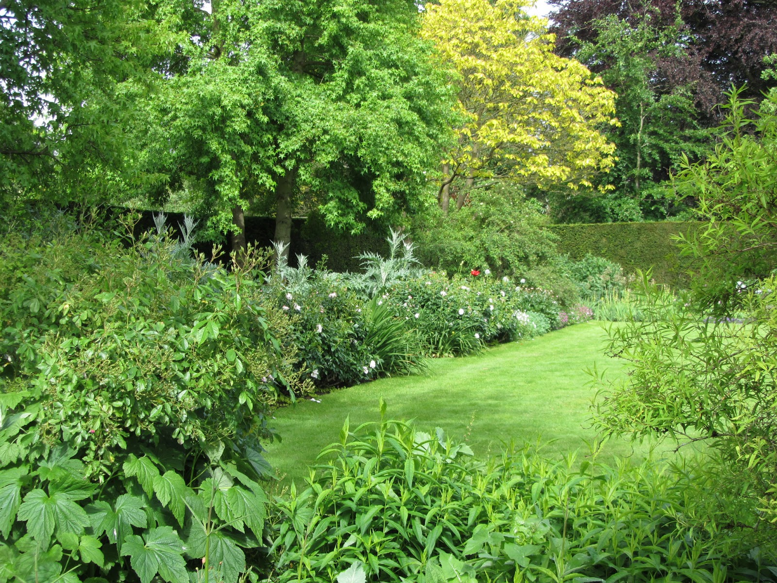 Ham photos rear garden at ormeley lodge - The Hedge Lined Corridors Make Exploring The Garden A Lot Of Fun And There Is Still A Sense Of Mystery When Going Round For A Second Time With Some