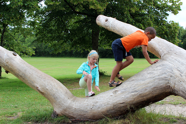 discovery-upton-country-park-children-playing-climbing-trees-todaymyway.com