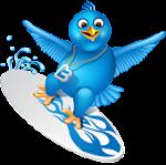 Siga o Taiu no Twitter