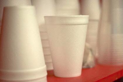 Awas, Ada Bahaya Kanker di Kemasan Styrofoam