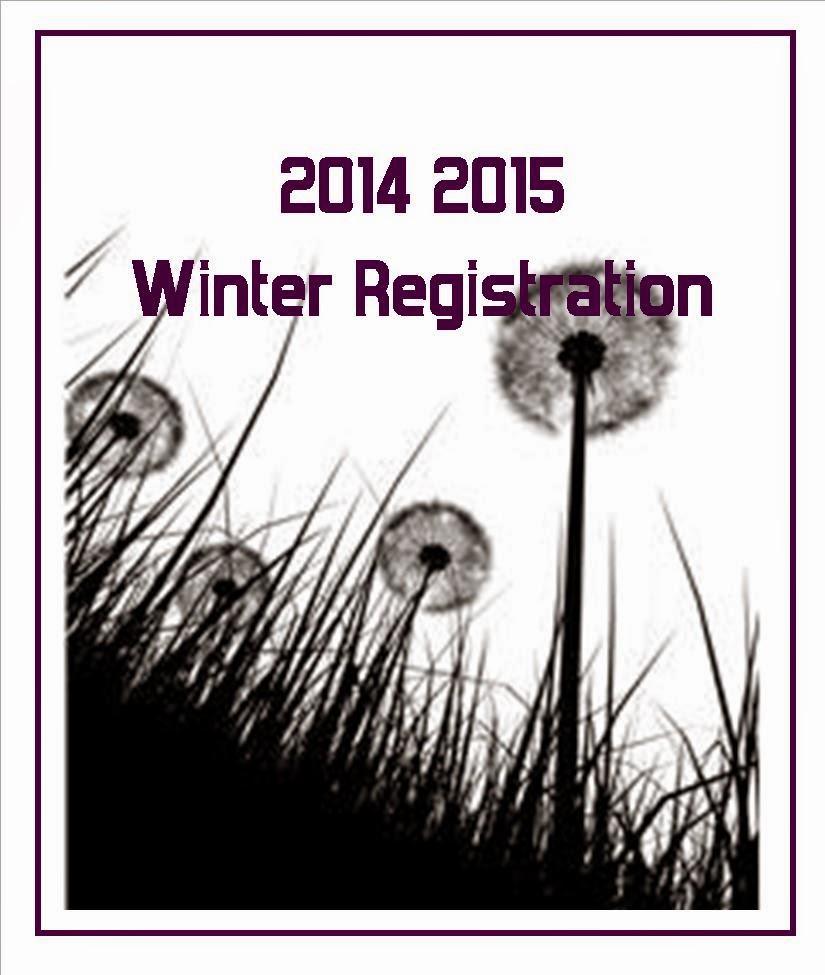 irish aquatics winter meet 2015