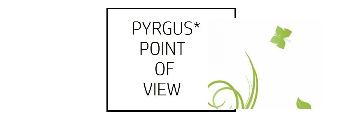 PYRGUS