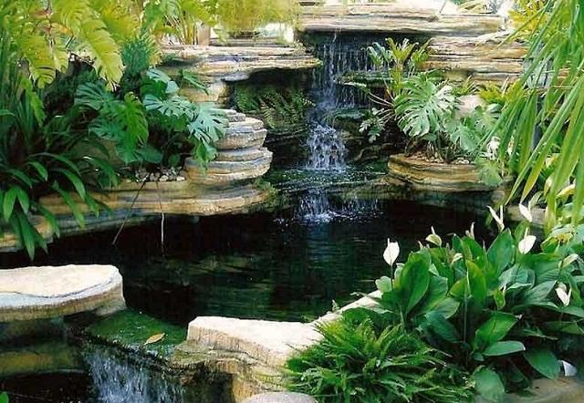 Kolam dan Taman Mempercantik Halaman Rumah