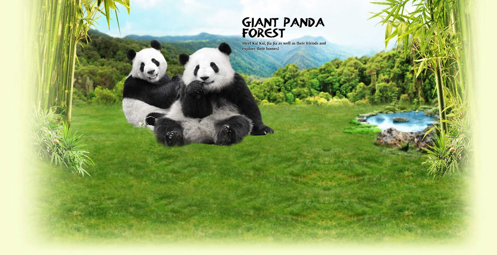 Giant Panda Forest - Welcome to the home of Singapore's very own giant pandas, Kai Kai and Jia Jia!