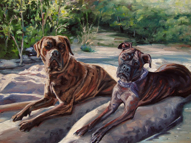 Bullmastiffs lounge on dry rocks  with shallow water around them.