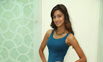 Erika Fernandez at Gaalipatam press meet-thumbnail