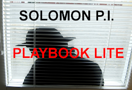 FREE PLAYBOOK