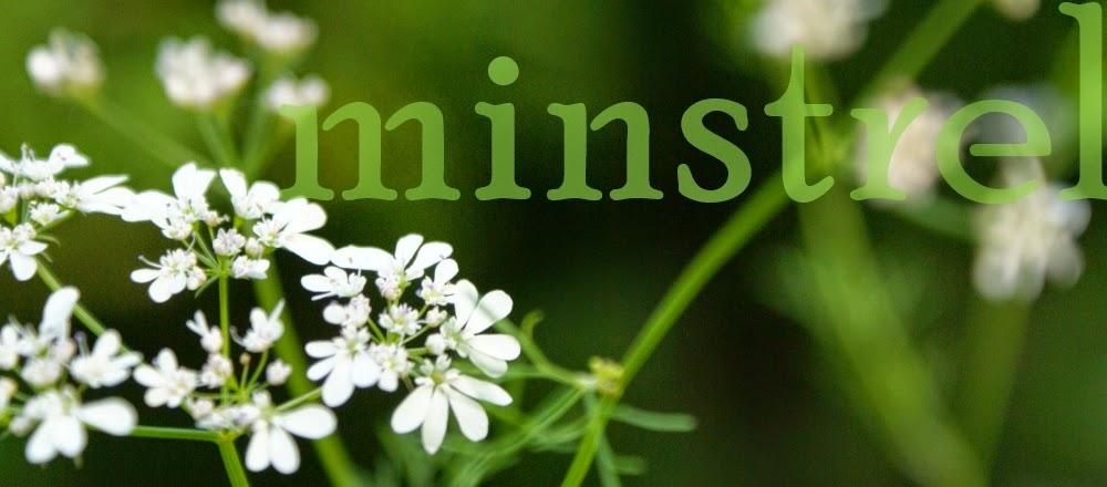 http://roamingminstrelsong.blogspot.co.uk/