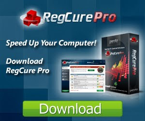 Download RegCure Pro