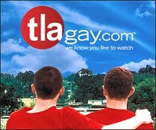 GLBT DVDs Available at