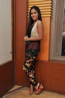 Prashanthi at affair press meet 002.jpg