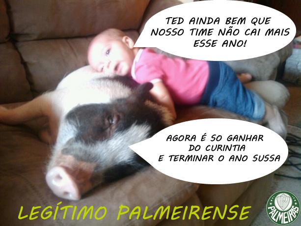 Imagens engraçadas para facebook: Legítimo palmeirense