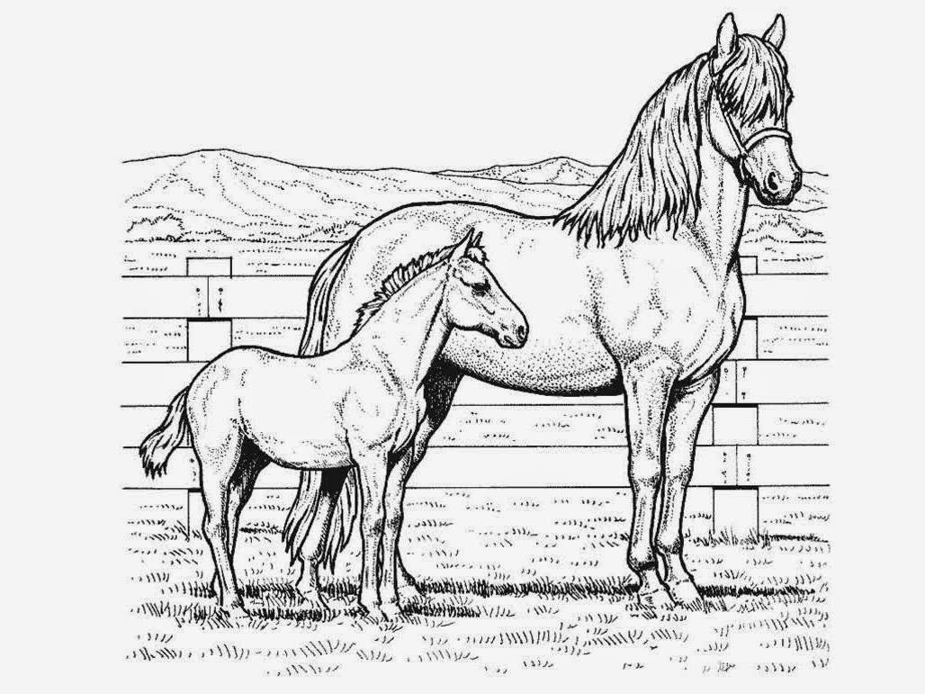 coloring book pages of horse - photo#14
